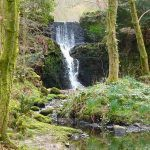 The waterfall in Finlaystone