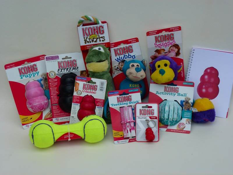 Win Kong dog toys!