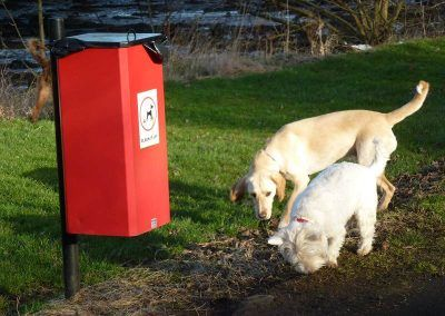 dogs next to poo bin