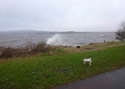 stormy river clyde
