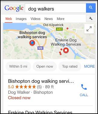 google dog walkers