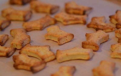 Cheesy dog biscuits