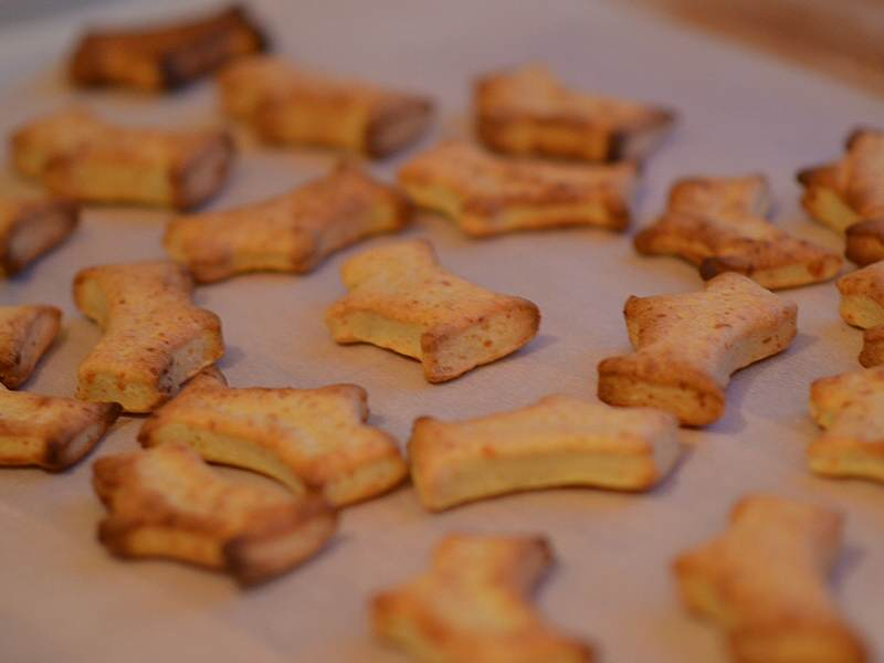 Best Healthy Dog Biscuit Recipe