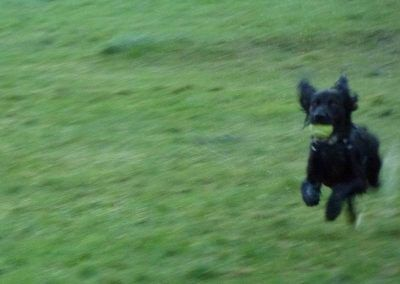 Duffy running hard!