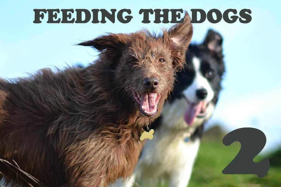 Feeding the dog(s)… Part 2