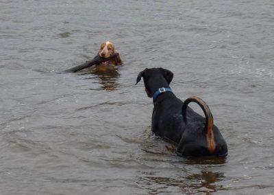 """""""Bring it a bit closer, Penny!"""""""
