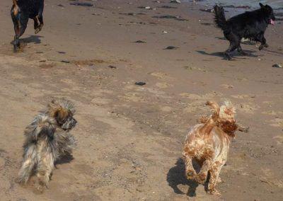 Running on the beach!