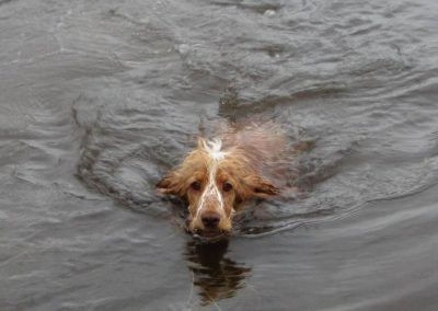 Penny learnt to swim late in 2011