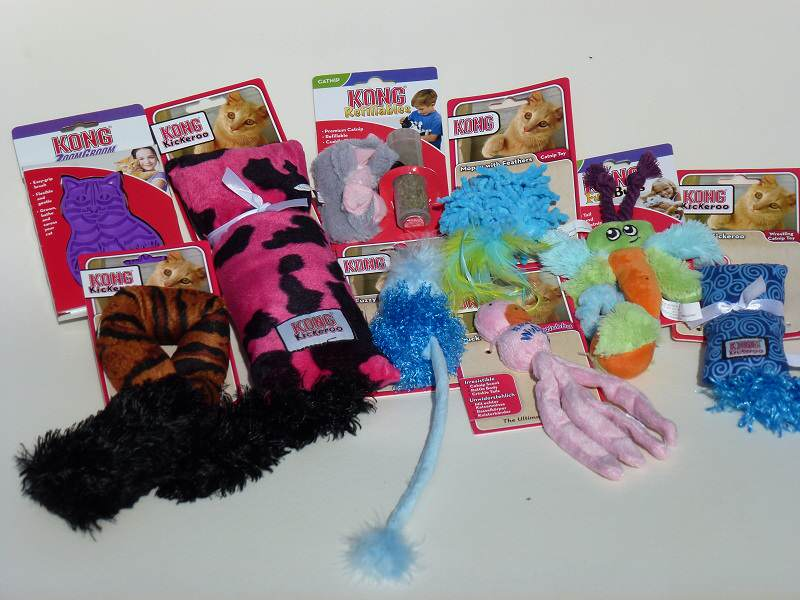 Win Kong cat toys!
