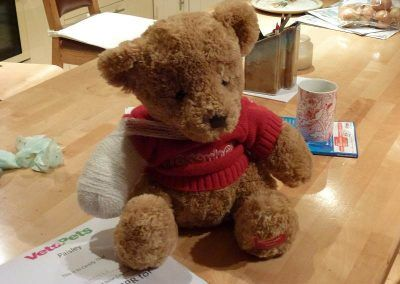 The bear I practised my bandaging on!