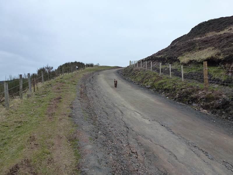 steep climb kilpatrick hills