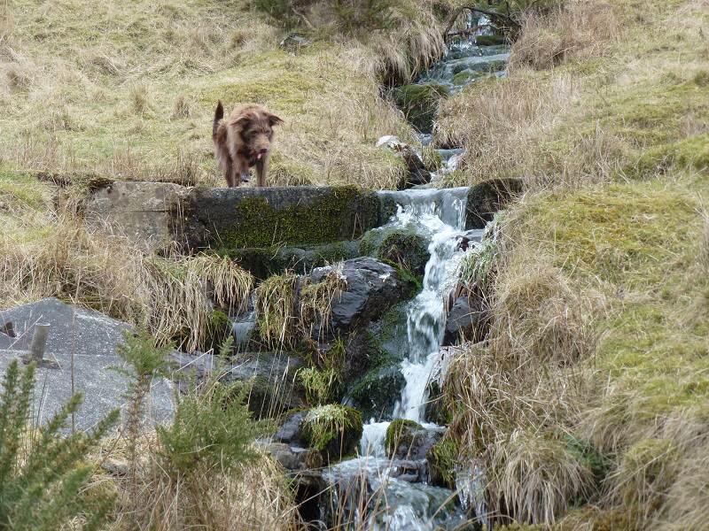 kilpatrick hills stream