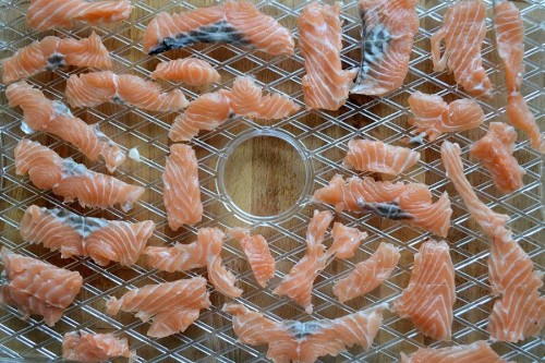 salmon strips on tray