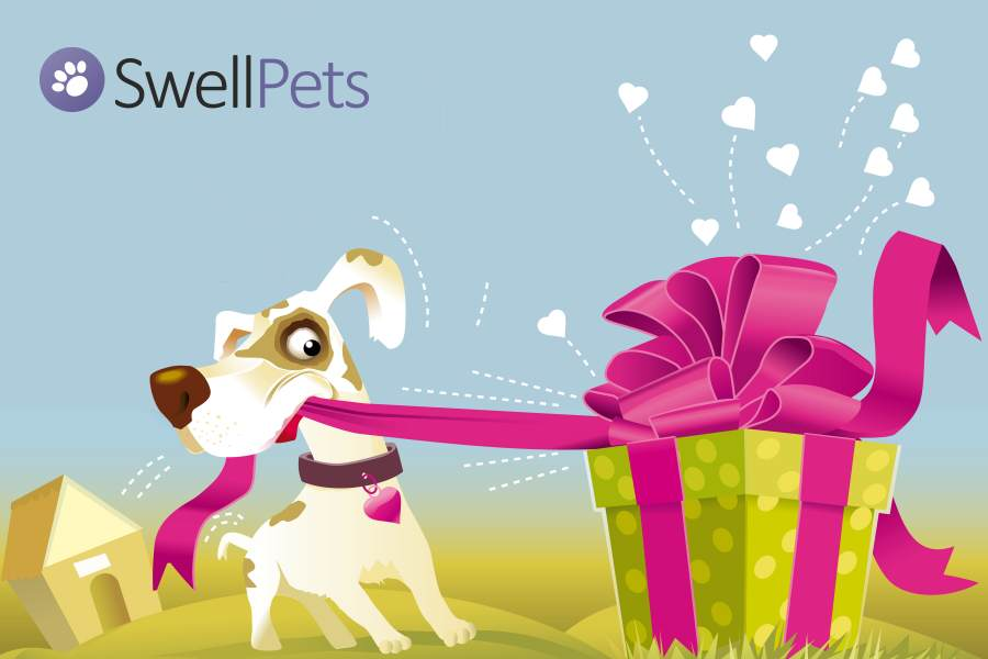 Win £100 to spend at SwellPets.co.uk