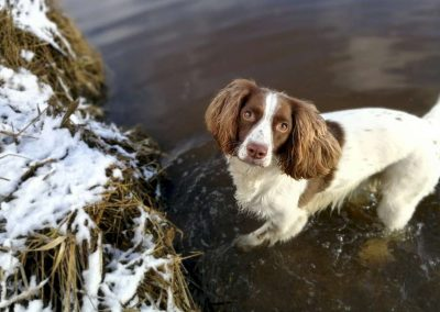 Lexi having a wee play in the river