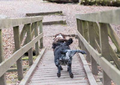 Flo and Benny run across