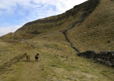 Walking around the Lang Craigs, we're near the top of this trail