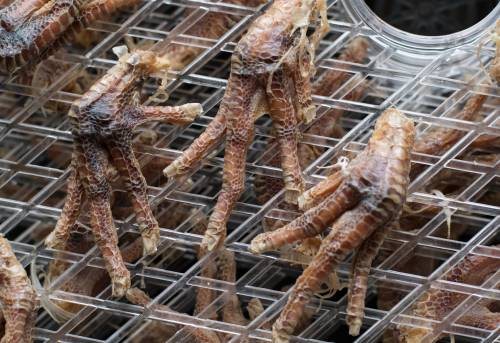 close up dried chicken feet