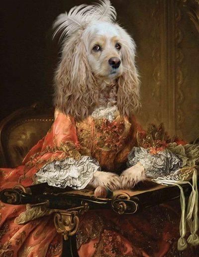 dog portrait picture