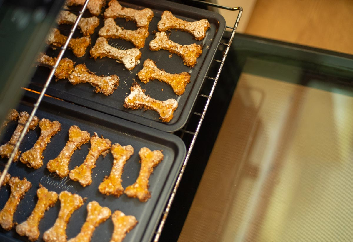 dog biscuits being pulled out oven