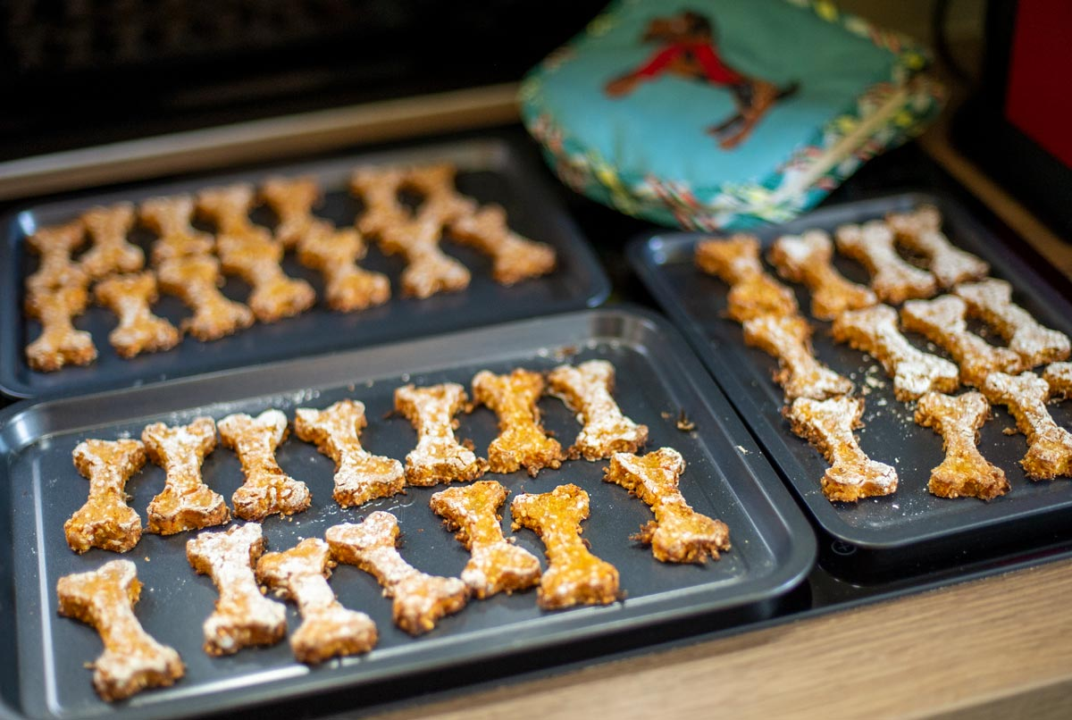 dog biscuits cooling