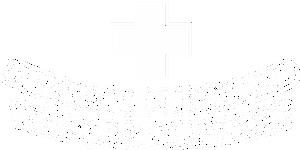 vets4pets paisley logo